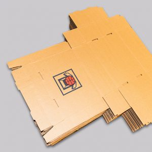 Cajas de archivo autoarmables